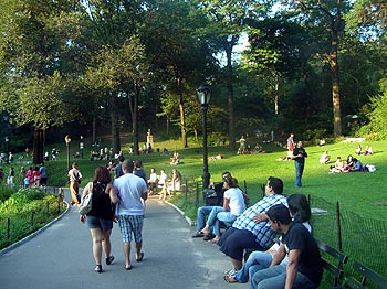 Central Park in late afternoon.