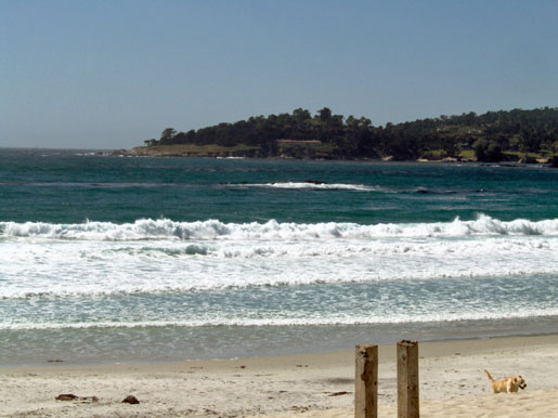 Carmel River State Beach