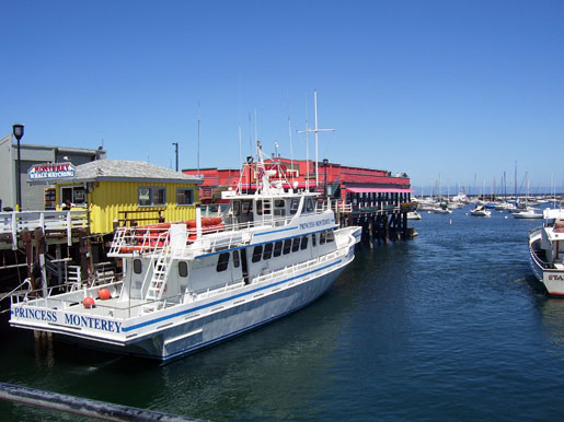 One of the whale watching cruise boats.